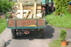 Holz_machen_04