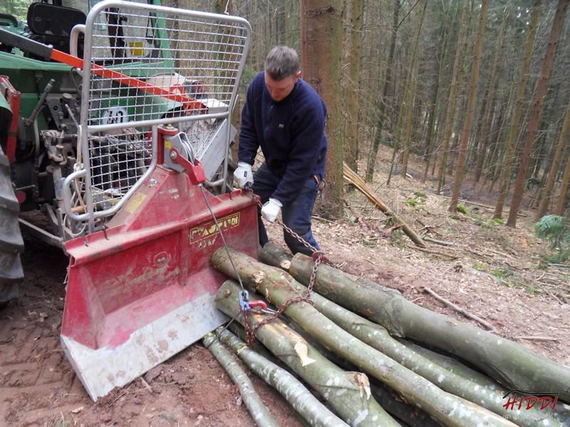 Holz_machen_03-2012_011