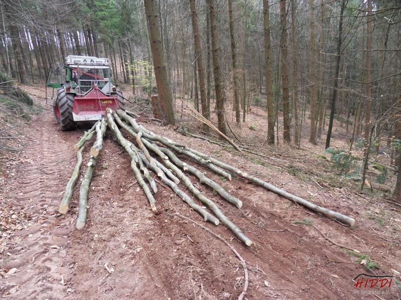 Holz_machen_03-2012_012