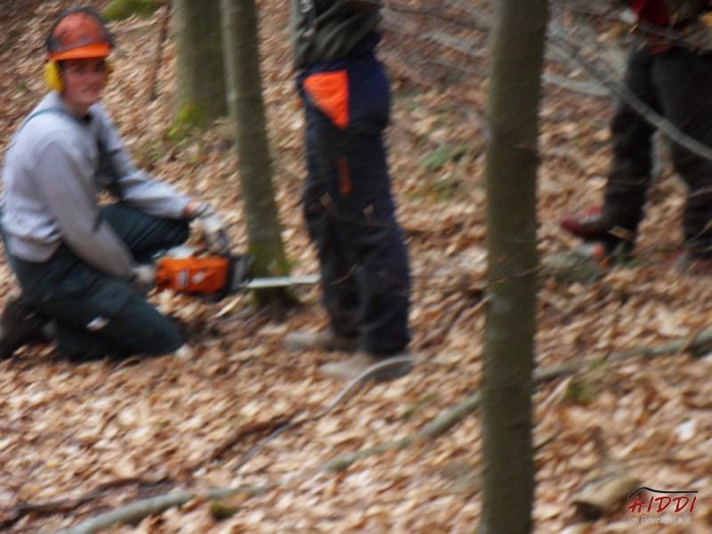 Holz_machen_03-2012_016