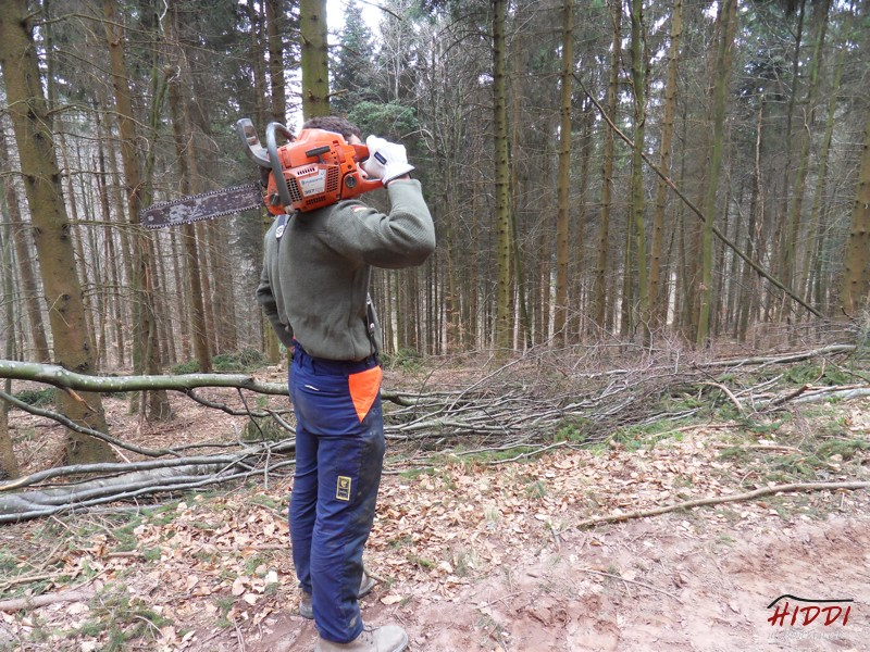 Holz_machen_03-2012_021