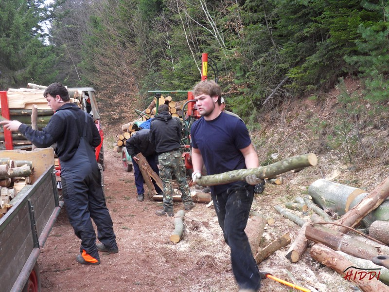 Holz_machen_03-2012_023