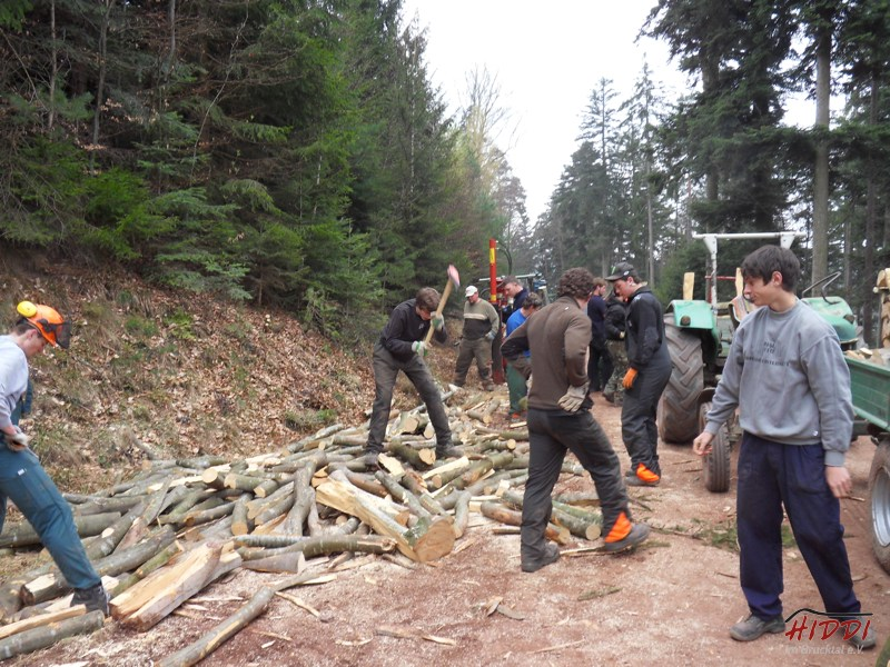 Holz_machen_03-2012_031