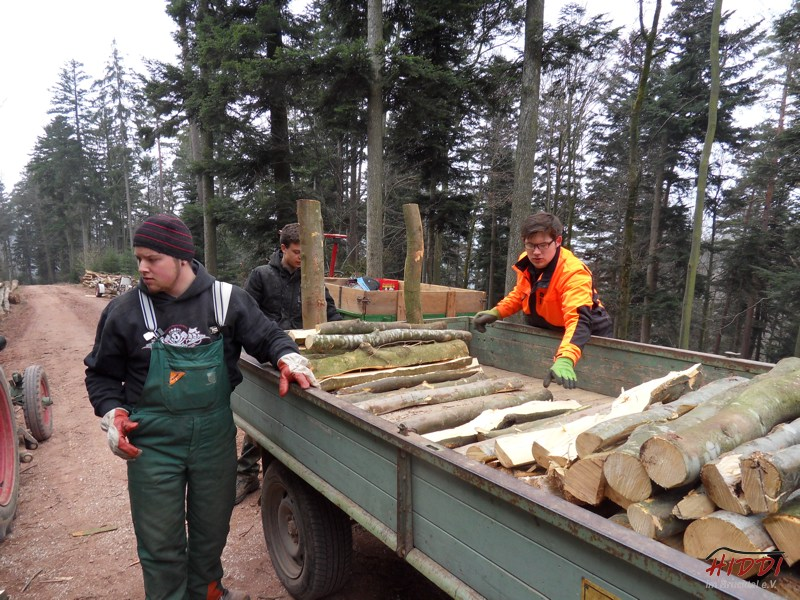 Holz_machen_03-2012_041