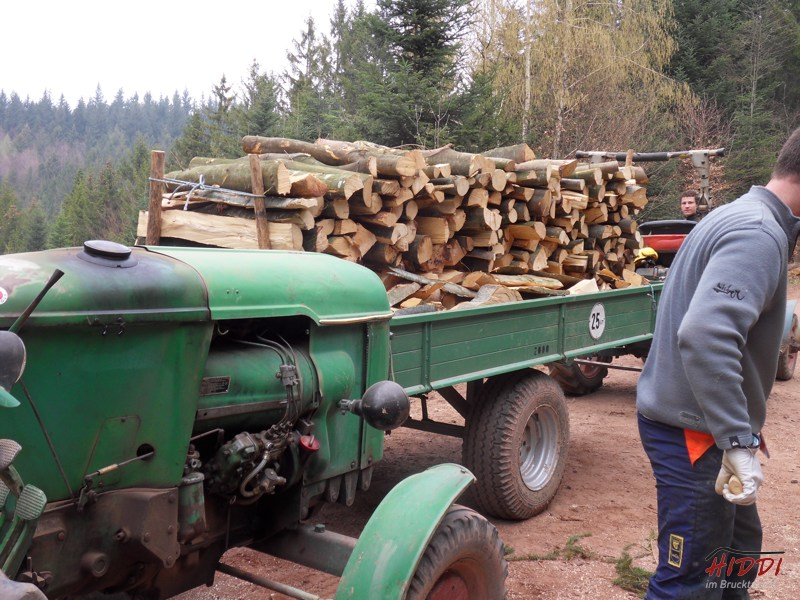 Holz_machen_03-2012_042