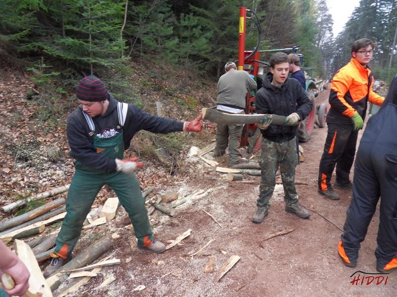 Holz_machen_03-2012_047