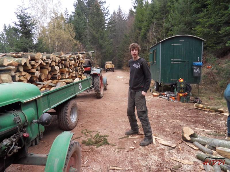 Holz_machen_03-2012_050