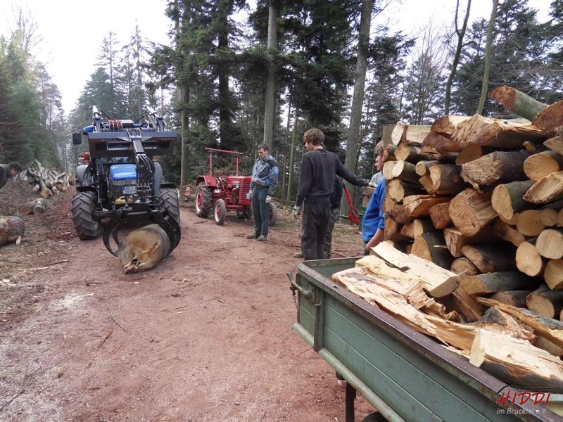 Holz_machen_03-2012_070