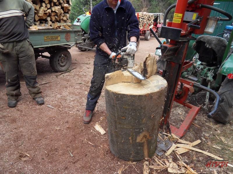 Holz_machen_03-2012_073