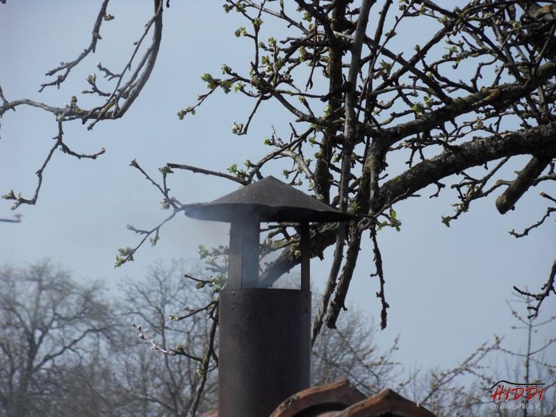 Holz_machen_03-2012_083