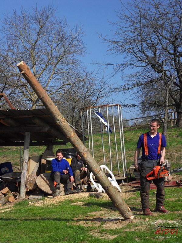 Holz_machen_03-2012_091