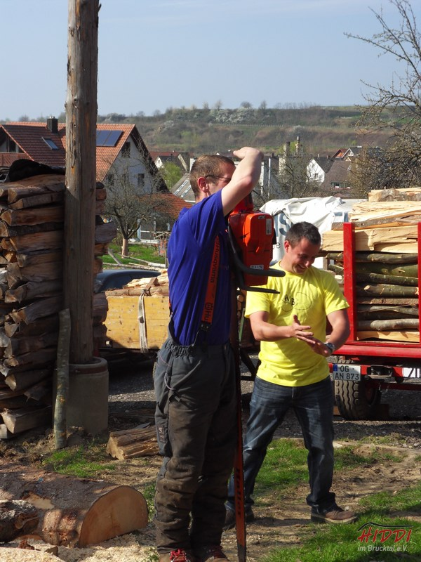 Holz_machen_03-2012_098