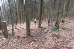 Holz_machen_03-2012_013