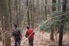 Holz_machen_03-2012_018