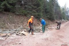 Holz_machen_03-2012_024