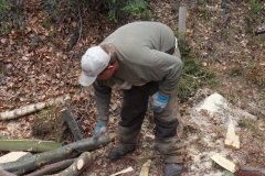 Holz_machen_03-2012_034