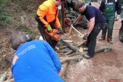 Holz_machen_03-2012_036