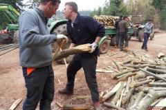 Holz_machen_03-2012_038