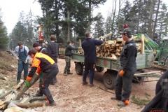 Holz_machen_03-2012_061