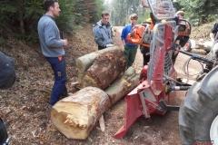 Holz_machen_03-2012_067