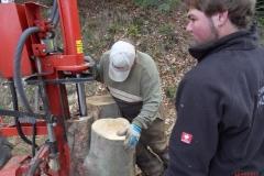 Holz_machen_03-2012_069