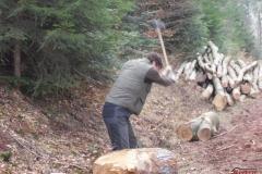 Holz_machen_03-2012_071