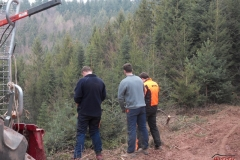 Holz_machen_03-2012_074